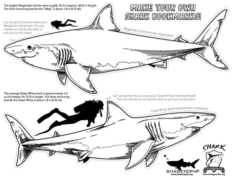 SG-SharkBookmarks1.jpg