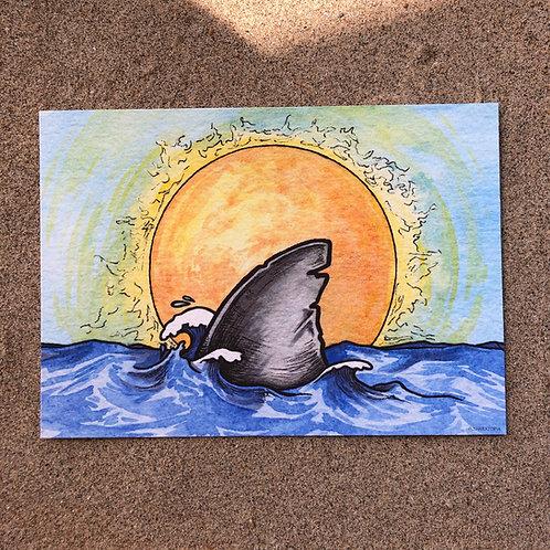 5x7 Print - Sunshine Shark Fin