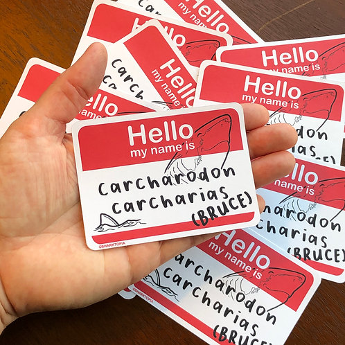 10 Eco Paper Stickers ('Hello my name is...')