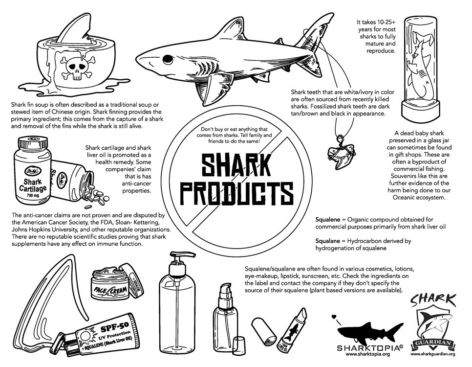 sharkproducts.jpg