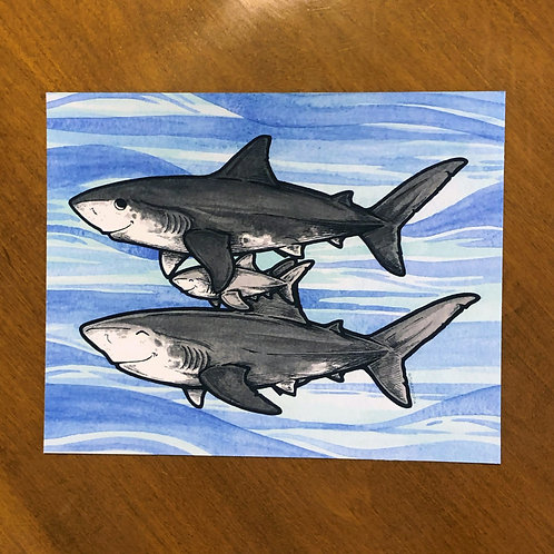 Print - Shark Family (4)
