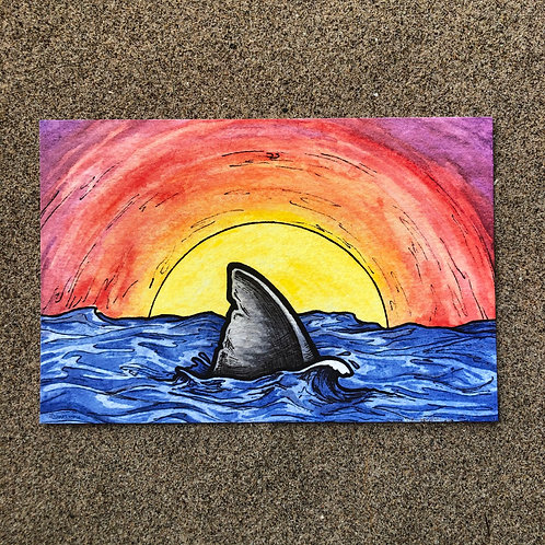 4x6 Print - Sunset Shark Fin