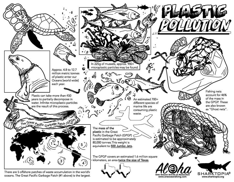 conservation-plasticwaste.jpg