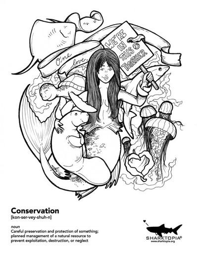 conservation-together_edited.jpg