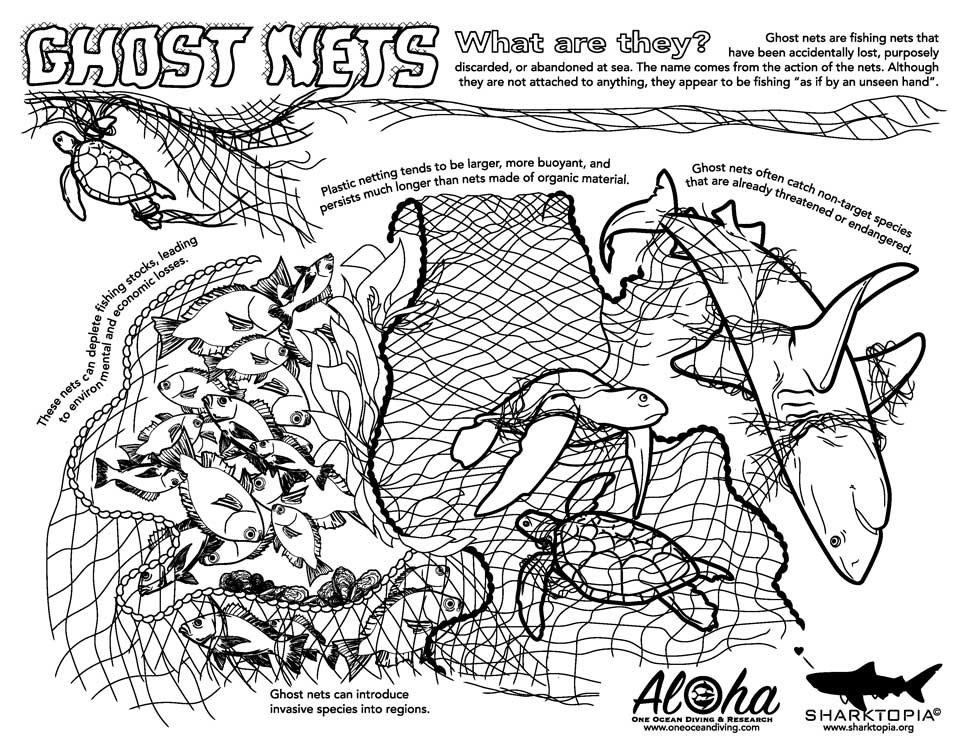 conservation-ghostnets.jpg
