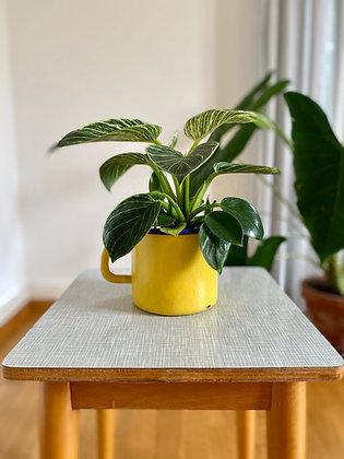 Yellow enamel retro pot