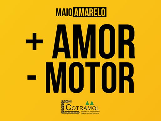 + AMOR - MOTOR