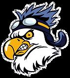Mean bird.png
