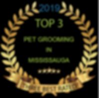 Top 3 pet grooming in Mississauga