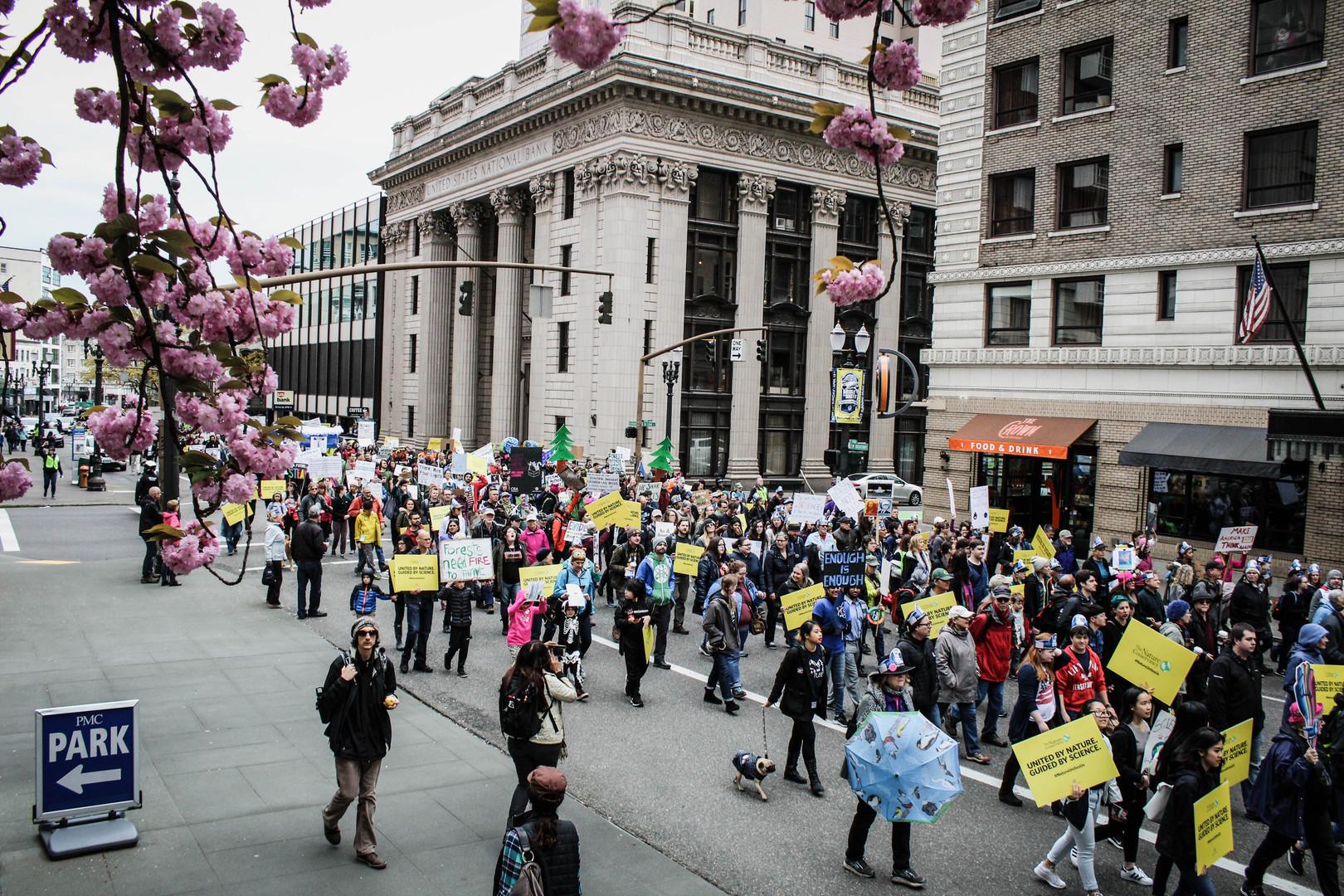 Portland Activism