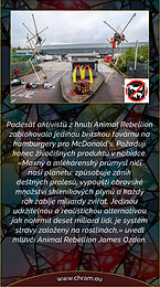 Podporujeme Animal Rebellion.