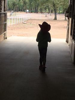 Paisley in barn