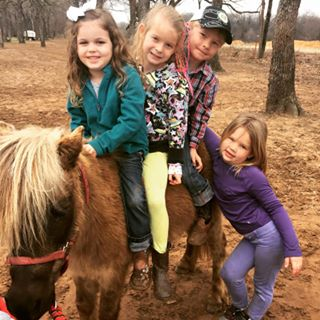 3 on a pony