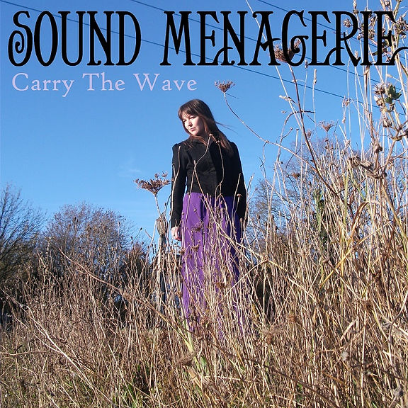 Carry_The_Wave__©_Sound_Menagerie.jpg