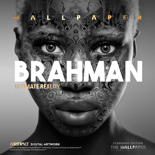 Brahman Ultimate Reality - The Wallpaper (Standard edition)