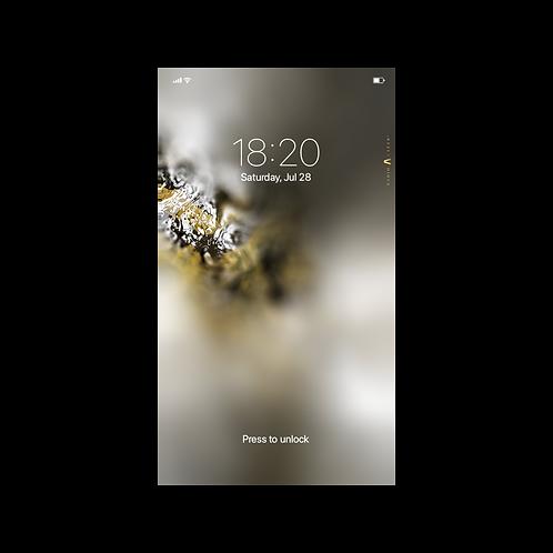 Cronus Original - Wallpaper for Phone