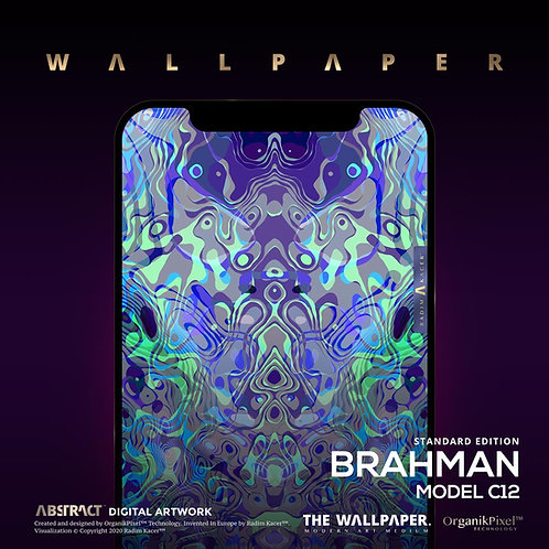 Brahman Model C12 - The Wallpaper (Standard edition)