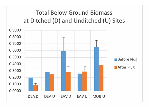 dimcp veg study_below ground biomass.png