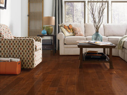 Yellow Birch Sable Flooring Now Herrin IL