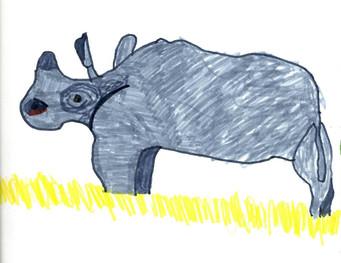 Rhino - 2016