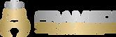 FRAMEDI logo 01.png