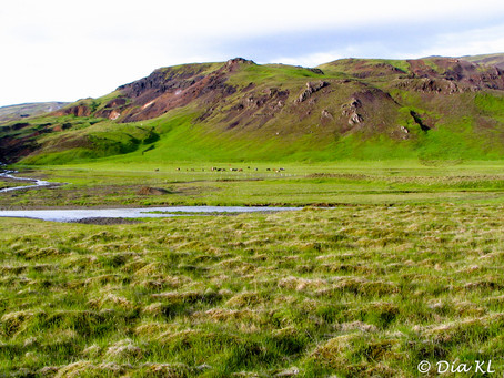 Iceland (2006) ~ 04. Hveragerdi (Hveragerði)