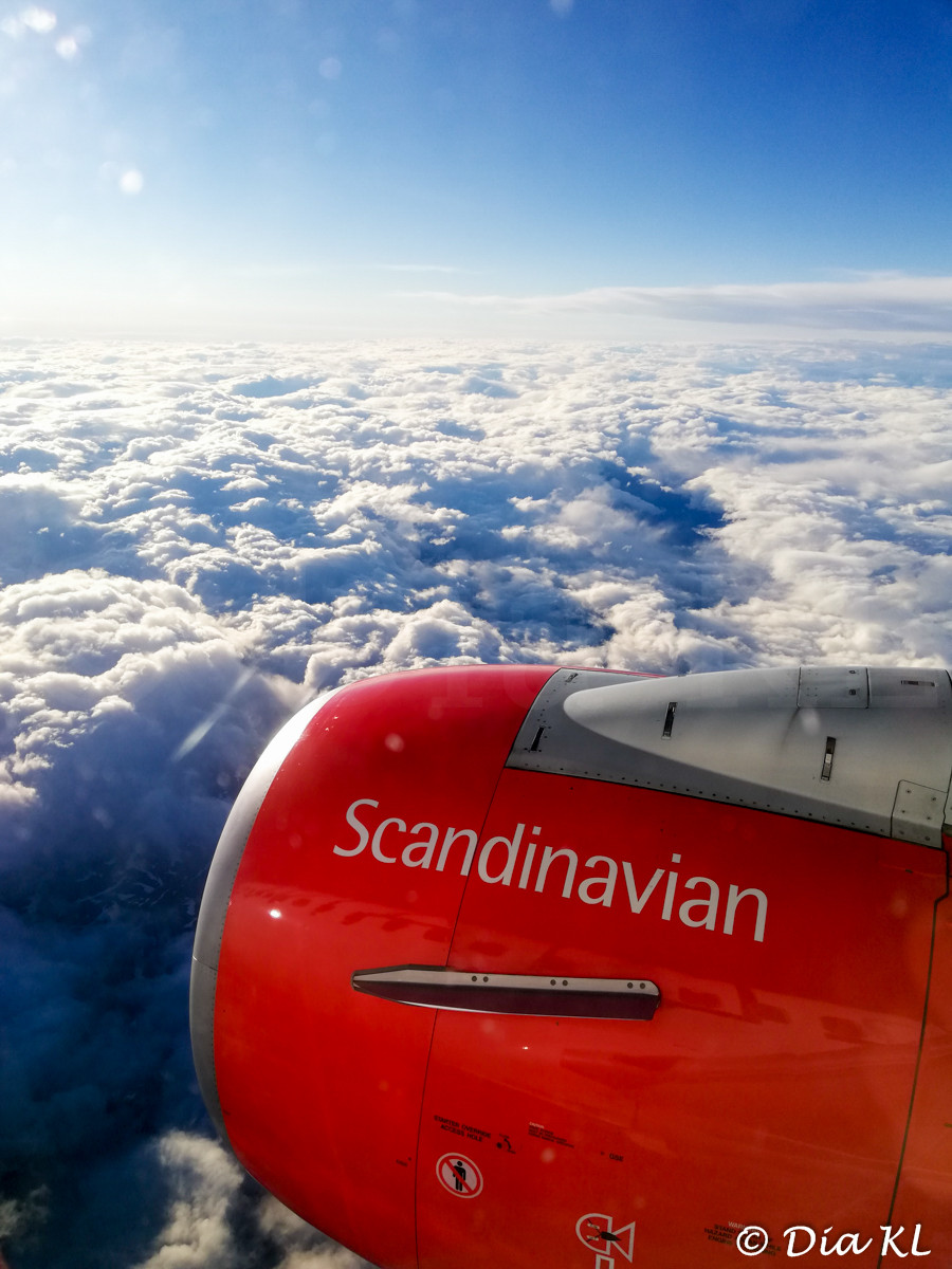 Flight from Oslo to Bergen, Norway. SAS Scandinavian Airlines. July 2020. Covid 19 pandemic first wave.