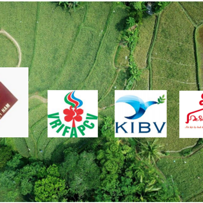 Ideas for sustainable products of traditional villages Vietnam 2020