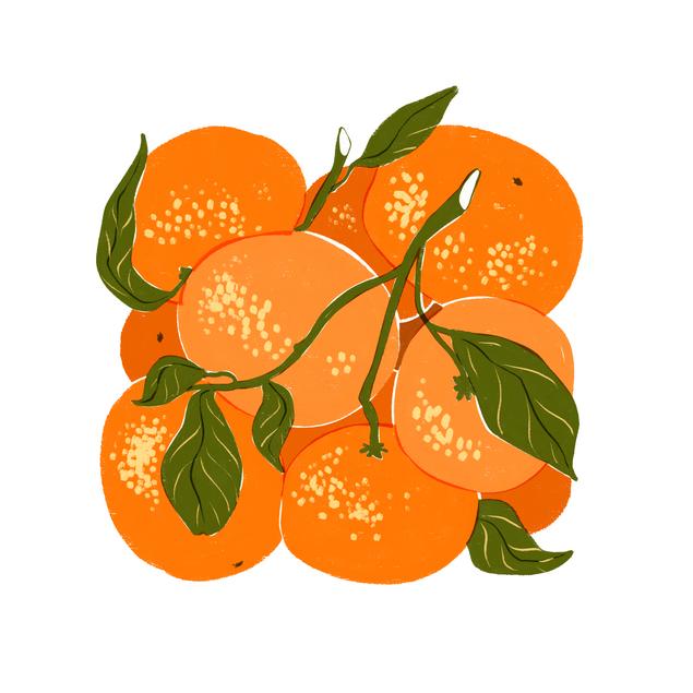 Box O' Oranges