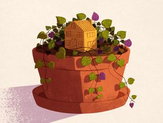 Tiny Jungle Home