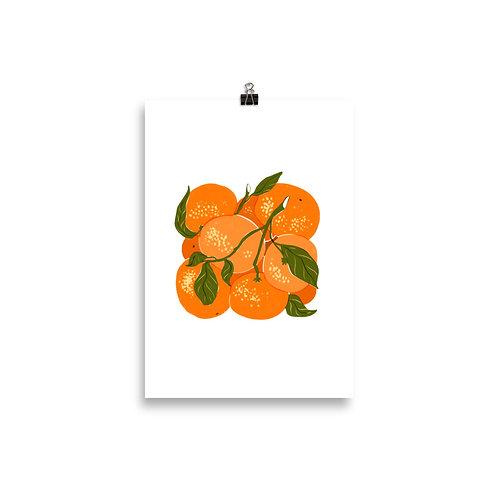 Fresh Vitamin C Print