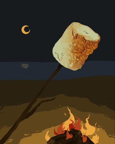 Melthing Marshmallow Time Lapse