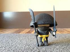 chinese-ninja.jpg