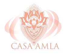 CASA AMLA_directory_graphci.png