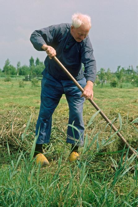 Farmer, Holland