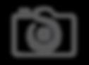 SSP_LOGO-notext.png