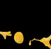 fydtales-logos_black_gold.png