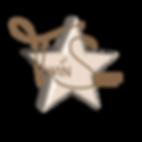 logo neuf 4.PNG