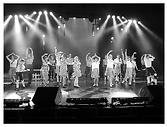 Stage comédie musicale Bruxelles