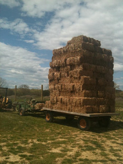 Straw Baled and Stacked