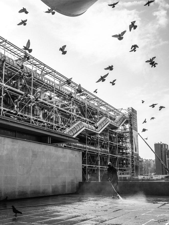 Jet d'oiseaux sur Beaubourg