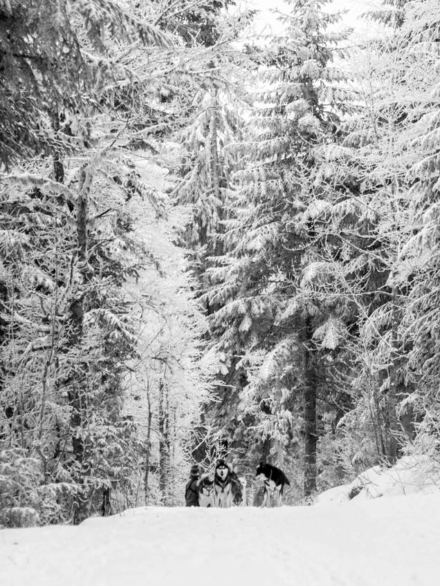 Alaskan Kee Klai