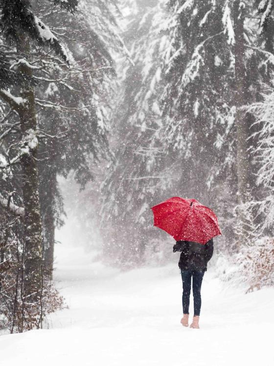 Désir d'hiver