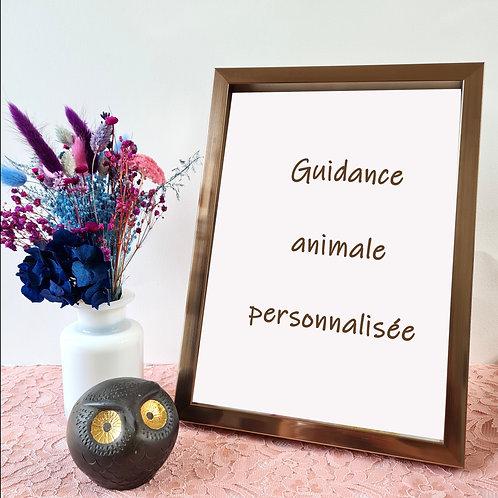 guidance animale personnalisée blaçiy nhaa