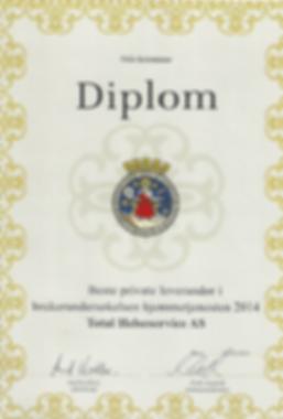 Diplom 2014-min.PNG