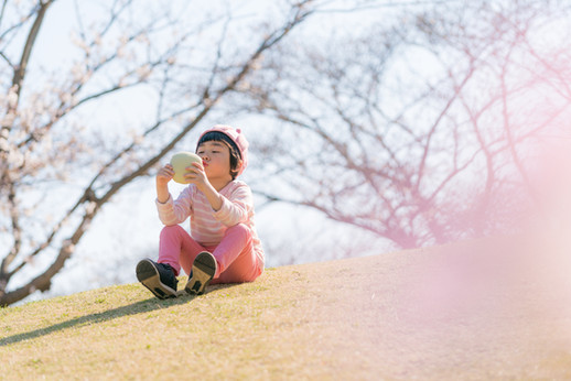 桜 子供写真