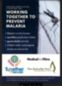 Malaria Project Poster - RESIZED.8d97fc0
