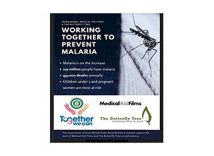 Malaria-Project-Poster---RESIZED.jpg