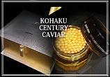新商品 | スキンケア | 大阪 | 八尾 | 化粧品 | コハクセンチュリーキャビア | 美容液
