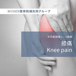 【膝の痛み】半月板損傷